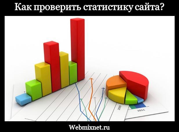Как проверить статистику сайта