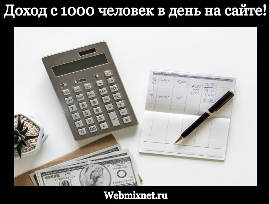 сколько можно заработать на сайте с посещаемостью 1000 человек в день