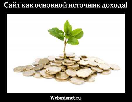 Сайт как основной источник дохода