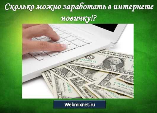 сколько можно заработать в интернете новичку