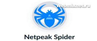 Бесплатная раскрутка сайта с помощью Netpeak Spider
